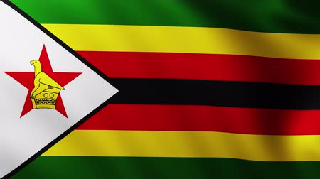 creased : Large Flag of Zimbabwe fullscreen background fluttering in the wind