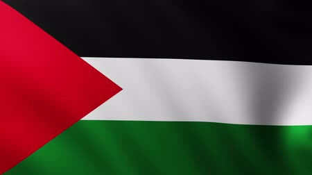 creased : Large Flag of Palestine fullscreen background fluttering in the wind with wave patterns Stock Footage