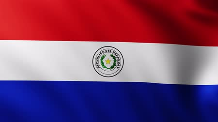 creased : Large Flag of Paraguay fullscreen background fluttering in the wind with wave patterns Stock Footage