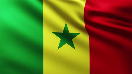 marş : Large Flag of Senegal fullscreen background fluttering in the wind with wave patterns