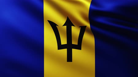 creased : Large Flag of Barbados background fluttering in the wind with wave patterns