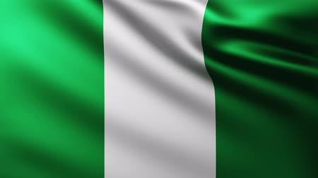 nigeria flag : Large Nigerian Flag fullscreen background fluttering in the wind with wave patterns