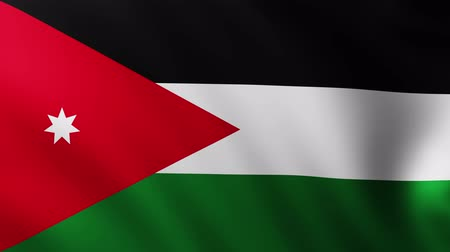Large Flag of Jordan fullscreen background fluttering in the wind Wideo