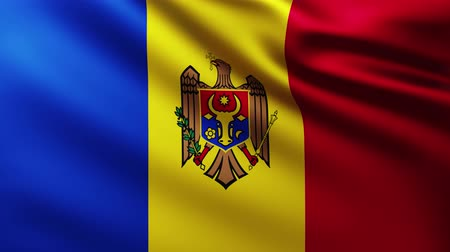 Large Flag of Moldova fullscreen background fluttering in the wind