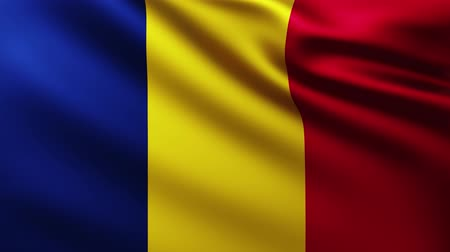 чад : Large Flag of Chad fullscreen background fluttering in the wind