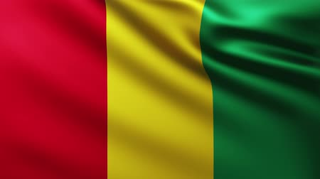 guinean : Large Flag of Guinea fullscreen background fluttering in the wind