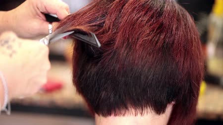 corte de cabelo : Video of young woman getting a new haircut by hairdresser, closeup shot. Vídeos