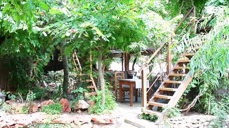 Ornamental garden with wooden patio.