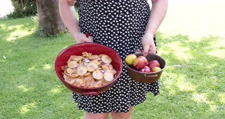 terracota : Caucasian woman outdoor in the garden carrying in one hand a bowl with plums and in the other hand a terracotta baking tray with slices of fruit and sugar for a cake preparation.