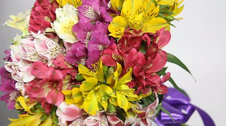 alstroemeria : colorful flowers bouquet of alstroemeria turn. Camera at an angle