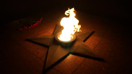 mortal : Lay carnations at the eternal flame-1