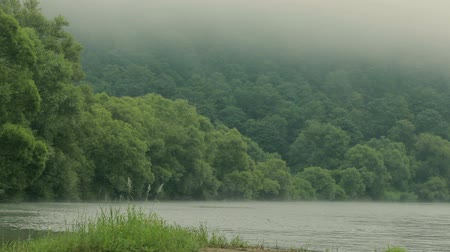 Morning fog on the Dniester River Stock Footage