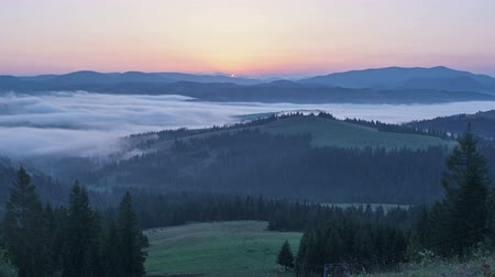 morning in the Carpathian mountains. Dynamic fog in the middle of the mountains Stock Footage
