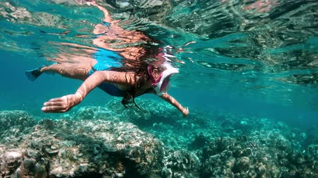 submerge : Underwater girl snorkeling in a clear tropical water at coral reef. Young woman swimming above bright coral reef in the sea on a background of a tropical beach