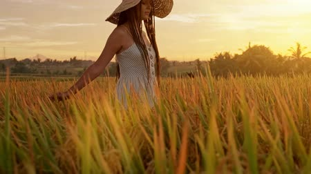 reszelt : Sensual young woman in white dress enjoying in violet lavender filed at beautiful summer sunset. Young female enjoying nature and sunlight in straw field.