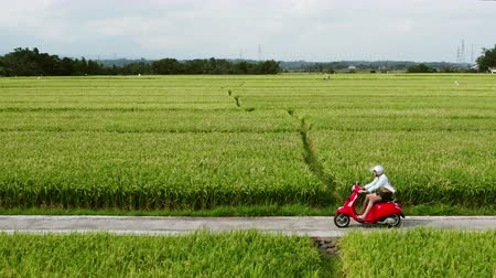 indonesia : A young man riding a chopper on a countryside road. Beautiful mountain road. travel on motorbike.