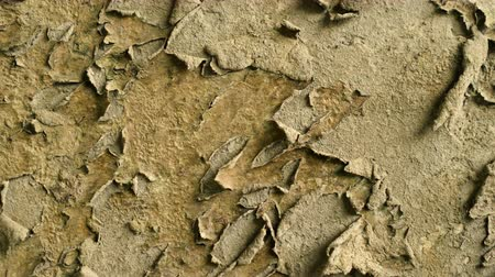 Old rusty wall. Dried paint rots and leaves the wall. Rotation wall background. Clear place for your isolated text pattern. Empty space for your title copy space. Copyspace logo to blank design. Wideo