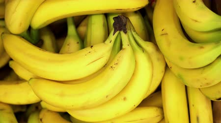 banan : A lot of yellow bananas closeup spinning on 4K background. Fresh fruit for tasty juice rotating in store. Background of yellow bananas turning for buyer. Clear place for your isolated text pattern.