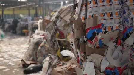 reprocessing : Big Factory For Recycling Paper and Carboard. Material Recovery Facility. Sorted cardboard waste ready for reprocessing. Sorted cardboard waste ready for reprocessing. Stock Footage