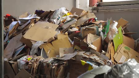 reprocessing : Waste paper. Big Factory For Recycling Paper and Carboard. Stock Footage