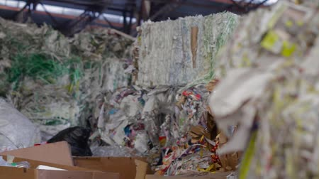 reprocessing : Material Recovery Facility. Sorted cardboard waste ready for reprocessing. Big Factory For Recycling Paper and Carboard. Large warehouse of waste paper in a factory.