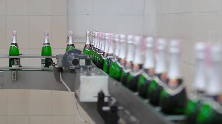 bung : Kiev, Ukraine - May 2017: Factory for the production of champagne. Bottles with champagne ready for packing move on the conveyor at the plant of champagne wines. Ambient sound at clip.