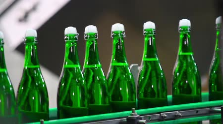 selektif : Bottles of green color move along conveyor at a factory of champagne wines, close-up. Bottle of champagne at factory. Factory for the production of champagne.