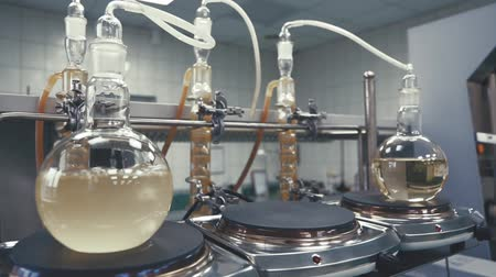 prova : Light liquid is bubbling in a flask under laboratory conditions. Quality control in the laboratory at factory of sparkling wines. Flask is heated with large temperature on the stove in laboratory.