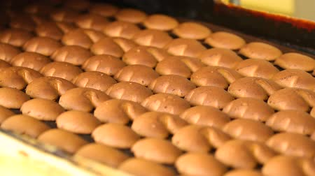 cracknel : Cookies leave the oven in the bakery. Biscuits and gingerbreads on a conveyor belt in a bakery. Manufactured gingerbread in a confectionery factory.