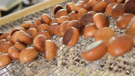 avelã : Fresh biscuits made in the factory. Manufactured gingerbread in a confectionery factory. Gingerbread in the glaze moves along the conveyor belt close-up.