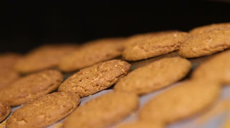 aveia : Oatmeal cookies are brown. Oatmeal cookies move along the conveyor belt, close up. Freshly baked cookies. Biscuits on a conveyor belt in a bakery. Stock Footage