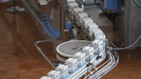 áruk : Milk package conveyor. Dairy products in tetra packaging are moving along the conveyor at a dairy factory.