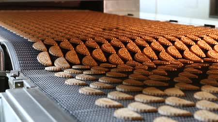 cracknel : Production line of baking cookies. Conveyor with cookies. Many sweet cake food factory. Freshly baked shortbread cookies leave the oven. Cookies on a conveyor in a confectionery factory oven.