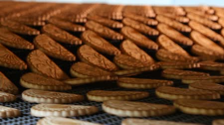 песочное печенье : Cookies on a conveyor in a confectionery factory oven. Freshly baked shortbread cookies leave the oven. Production line of baking cookies. Conveyor with cookies.