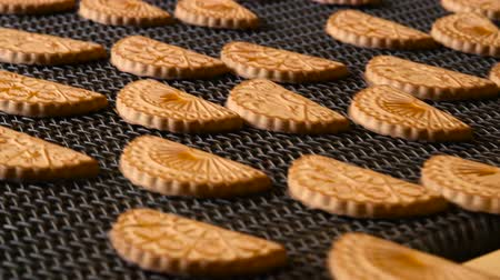 cracknel : Production line of baking cookies. Cookie is baked in the oven. Close-up. Conveyor with cookies. Many sweet cake food factory massive production. Stock Footage