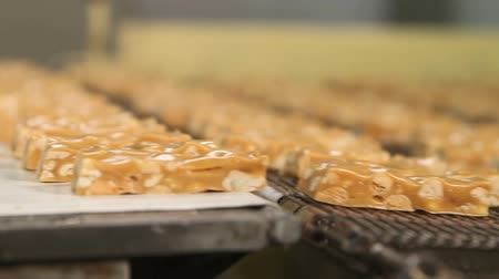 caloric : Nougat with peanuts close-up. Cutting a long line of viscous nougat into bars. Bars of nougat with peanuts on the production line of the factory for the production of sweets. Stock Footage