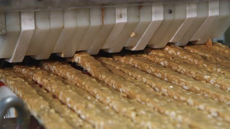 słodycze : Nougat with nuts of golden color on the conveyor in a confectionery factory. Cutting a long line of viscous nougat into bars. Bars of nougat with peanuts on the production line of the factory.