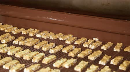 caloric : Bars of nougat with nuts are poured with chocolate. Manufacture of chocolate bars with nougat and peanuts. Chocolate bars move along conveyor belt at confectionery factory for the production of sweets Stock Footage