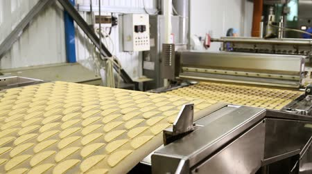 cracknel : Dough for baking cookies. Forming dough for biscuits. An employee at a confectionery factory. Conveyor belt with biscuits in a food factory - machinery equipment. Production line of baking cookies.