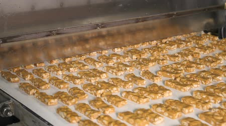 caloric : Nougat with nuts of golden color on the conveyor in a confectionery factory. Cutting a long line of viscous nougat into bars. Bars of nougat with peanuts on the production line of the factory.
