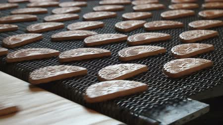 avelã : Conveyor belt with biscuits in a food factory - machinery equipment. Conveyor with cookies. Production line of baking cookies, closeup. Freshly baked shortbread cookies leave the oven.