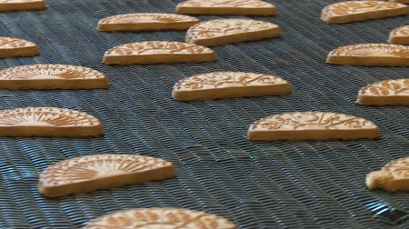 cracknel : Conveyor with cookies. Cookie factory, food industry. Fabrication. Cookie production. Many sweet cake food factory massive production. Freshly baked shortbread cookies leave the oven. Stock Footage