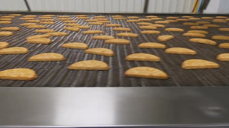 tray : Conveyor with cookies. Conveyor belt with biscuits in a food factory - machinery equipment. Production line of baking cookies. Freshly baked shortbread cookies leave the oven. Stock Footage