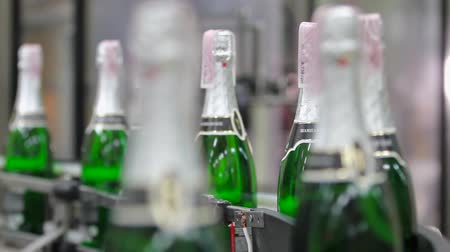 champagne bottles : Kiev, Ukraine - May 2017: Quality control of the products manufactured at the plant. Factory for the production of champagne. Change focus between the foreground and background. Ambient sound at clip.