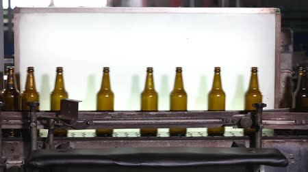 qualidade : Beer bottle factory. Backlit of beer bottles in a row on a conveyor belt in a wine bottling plant. Workers controls the quality and purity of glass bottles. Factory for the production of glass bottles