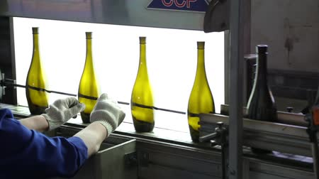 winemaking : Worker checks quality and purity of glass bottles. Backlit shot of wine bottles in a row on conveyor belt in a wine bottling plant. Wine bottles moving along conveyor belt in a wine bottling factory.