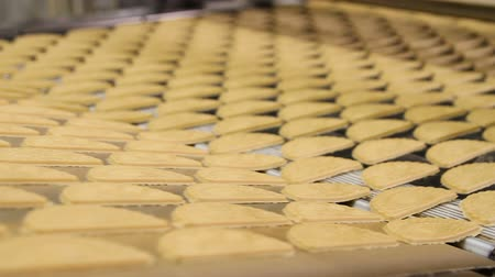 молдинг : Dough for baking cookies. Forming dough for biscuits. Conveyor belt with biscuits in a food factory - machinery equipment. Production line of baking cookies. Conveyor with cookies. Стоковые видеозаписи