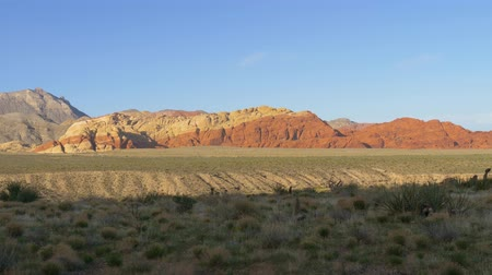 peyote : Panorama of Red Rock Canyon Las Vegas Nevada. Striated cliffs at Red Rock National Conservation Area, Nevada. Views from Red Rock Canyon. Cacti of the Desert of Nevada in the Red Rock Canyon Stock Footage