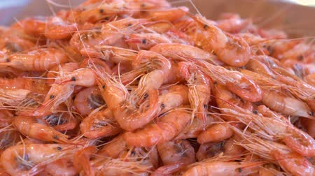 деликатес : Steam shrimps buffet bar in the restaurant. Boiled shrimps buffet. Close up image of freshly steamed shrimps. Shrimps are poured in a showcase in a seafood restaurant. Стоковые видеозаписи