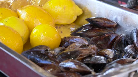 tray : Cooked mussels in a bowl with lemon. Stuffed mussels and lemon. Mussels close up on a tray in the window with lemon. Tray with mussels and lemons. Street trade. Stock Footage